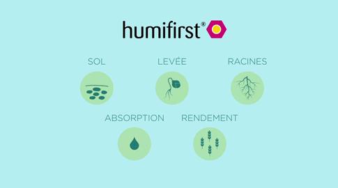 Humifirst®, produire plus avec autant de fertilisants